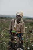 Andreas Ragnarsson - bomullsodlare i Burundi